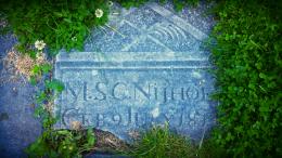 De mens van gisteren is gestorven in die van vandaag, de mens van vandaag sterft in die van morgen. Plutarchus